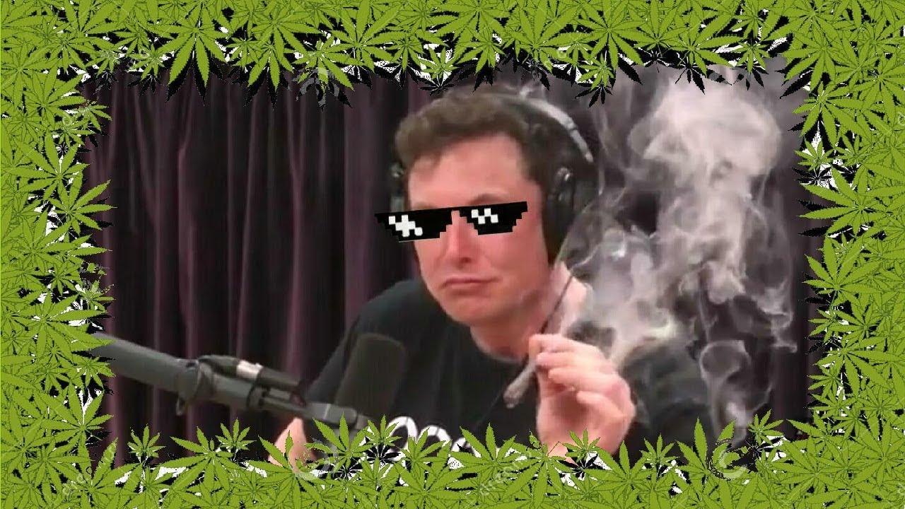 dank musk meme elon musk joe rogan smoking weed with music