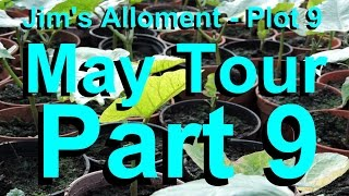 Jim's Allotment   Plot 9   May Tour Part 9   Weeding Tips, Tour and 'What's coming up'