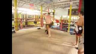 Lion Muay Thai camp 10 Kicks 10 киков новичок 3 недели тренировок