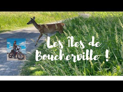Les îles de Boucherville 2021