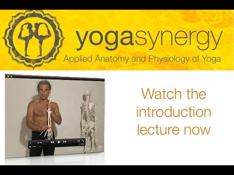 Yoga Synergy Online Course - Anatomy & Physiology of Yoga Example Lecture