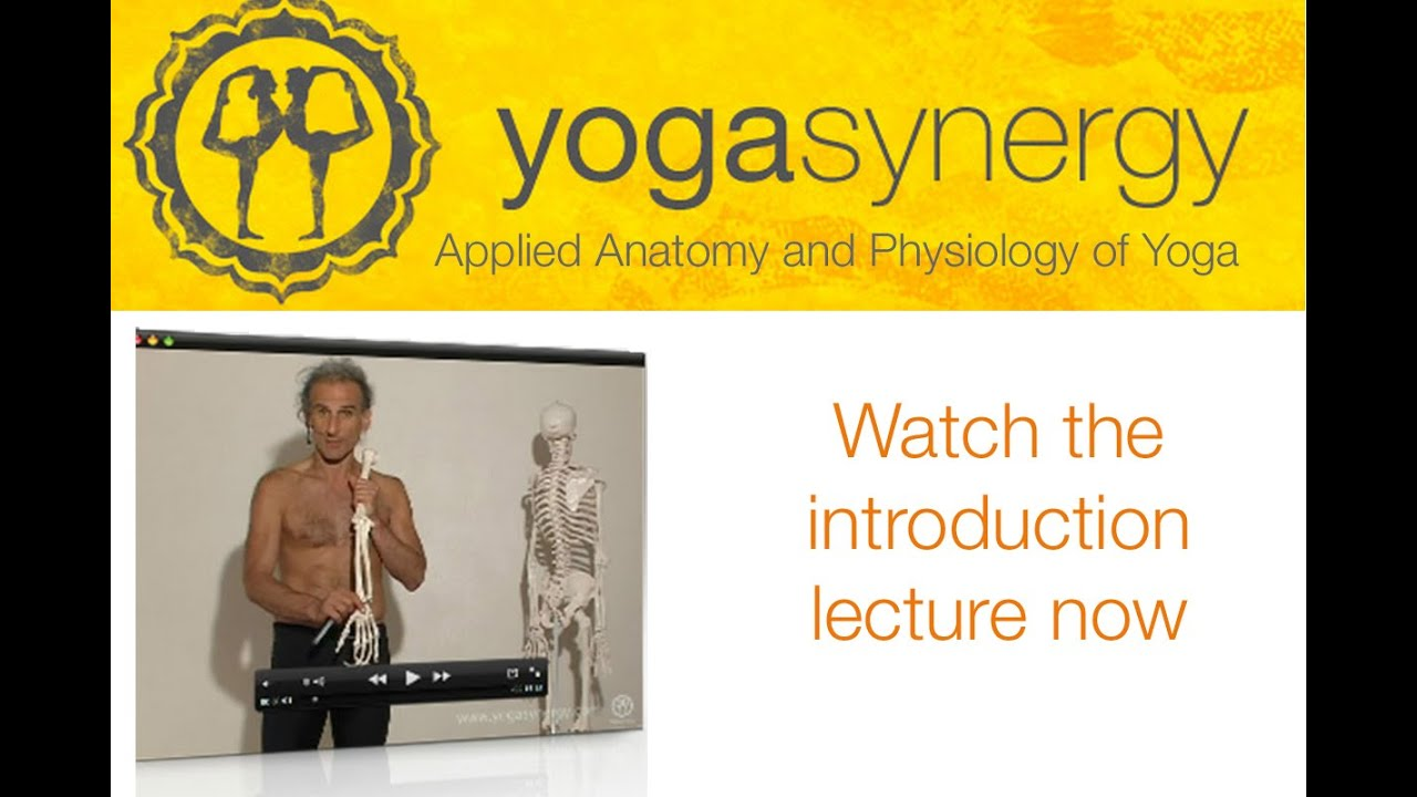 Applied Anatomy and Physiology of the Nervous System in Posture ...