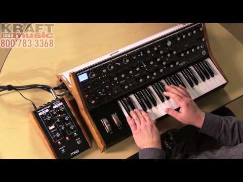 Kraft Music - Moog Sub 37 Analog Synthesizer Demo