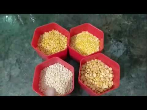Kandi Podi Preparation in Telugu