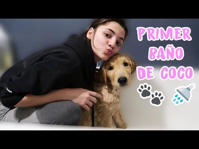PRIMER BAÑO DE MI PERRO COCO