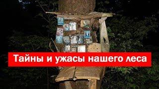 Тайны и ужасы нашего леса / Secrets and horrors of our forest