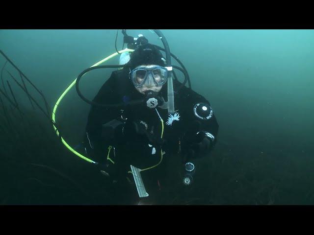 PADI Master Scuba Diver: Janna Nichols