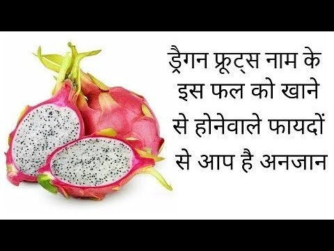Dragon Fruit Dengue ह द म