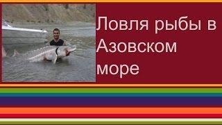 Ловля рыбы в Азовском море(В ролике показано какая рыба ловиться в Азовском море. г. Мариуполь адрес канала: http://www.youtube.com/user/Biznesshturman412..., 2013-05-07T08:12:54.000Z)
