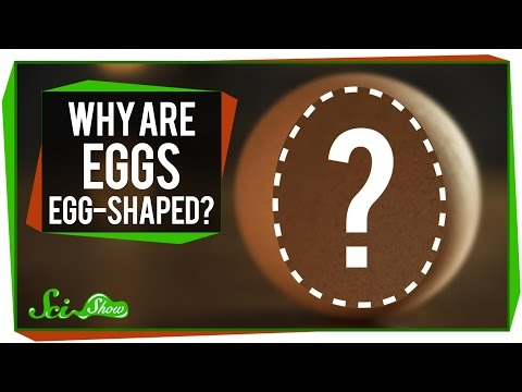 Why Are Eggs ... Egg-Shaped?