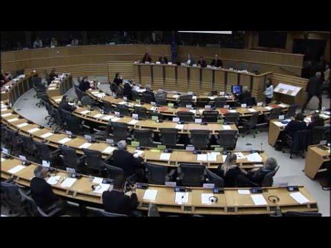MARO'-Petizione n. 2089/2014 al Parlamento Europeo: le menzogne indiane.