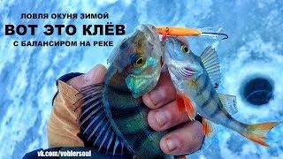 Вот Это Клёв Окуня. Зимняя рыбалка. Ловля на окуня на балансир. Видео отчёт декабрь 2017.
