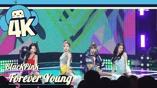 [4K & Focus Cam] Blackpink - Forever Young @Show! Music Core 20180804 블랙핑크 - 포에버 영