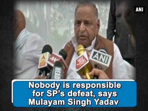 Nobody is responsible for SP's defeat, says Mulayam Singh Yadav  - ANI #News
