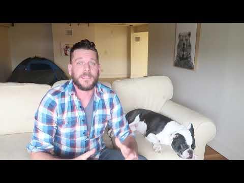 Bulldog Review