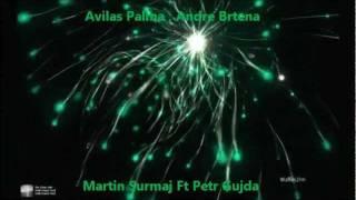 Martin Surmaj Ft Petr Gujda - Avilas Palma (RomaneGila)