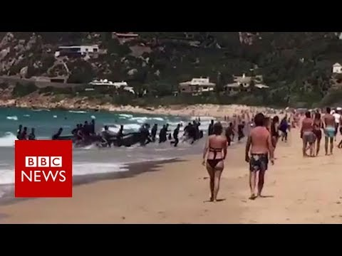 A boat full of migrants lands at a popular tourist beach in southern Spain - BBC News