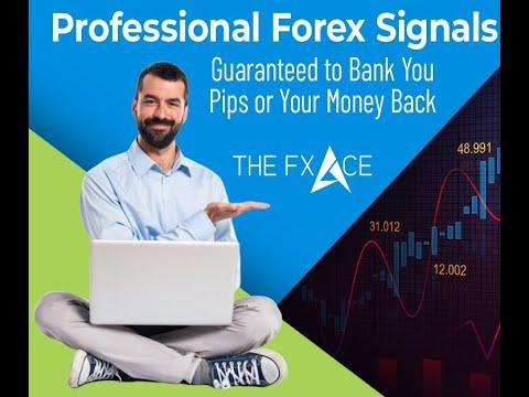 Market profit forex signal