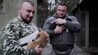 Karwat x Abus x Radzikowski kupują 210kg karmy dla schroniska w Łowiczu