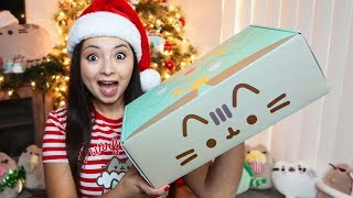 Ahhh! My Winter PUSHEEN box is here!