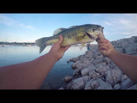 LAKE EERIE SHORE FISHING For Chunky Largemouth And Smallmouth Bass!