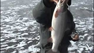 Ice Fishing 9.25 lb Cuttbow Jaw Jacker Video