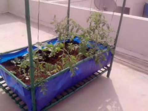 Roof top vegetable garden module in bangalore india youtube for Home garden design bangalore