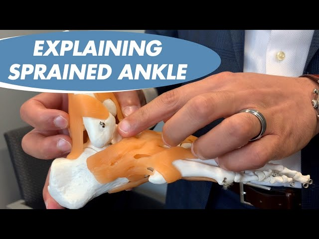 DR. SAYMEH EXPLAINS ANKLE SPRAINS - COMMON SOCCER INJURY - NJ SPINE AND WELLNESS