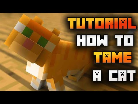 how-to-tame-a-cat-in-minecraft-2020