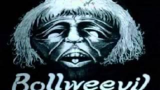 Bollweevil - rock solid