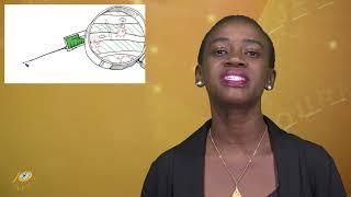Het 10 Minuten Jeugd Journaal 30 april 2020 (Suriname / South-America)