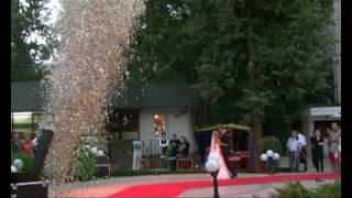 Холодная пиротехника (Свадьба, Первый танец)(http://geliosfireworks.com/ Пиротехническая фирма