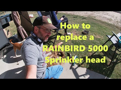 How To Replace A Rainbird 5000 Sprinkler Head