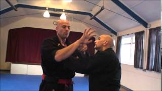 JuJitsu Forearm Striking Techniques