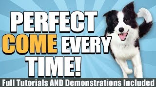 How To Train Your Dog To Come With Tutorials, Demonstrations, And More!