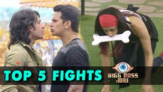 Top 5 Fights In Bigg Boss 9 Double Trouble