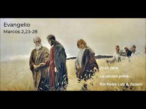 Evangelio del Día Martes - Mc 2, 23-28 - 22 de Enero