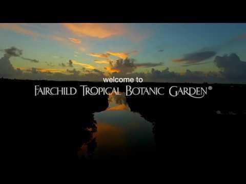 Fairchild Tropical Botanic Garden - Introduction Video