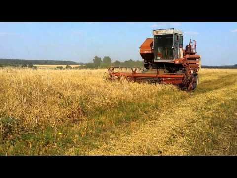 Сколько берет зерна комбайн нива