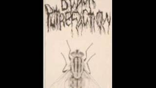 Black Putrefaction - Cochliomyia Hominivorax