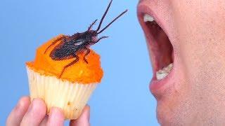 Surprise Bug In Food!