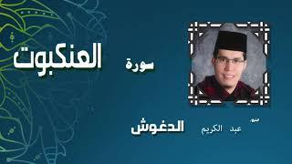 القران الكريم بصوت الشيخ عبد الكريم الدغوش | سورة العنكبوت