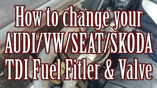 How to change your AUDI/VW/SEAT/SKODA TDI Fuel Filter and thermostatic valve