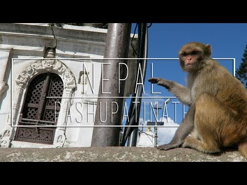 Pashupatinath Temple, NEPAL ('Round the World EP 29)
