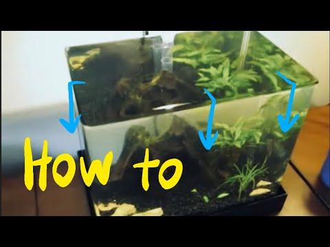 How To Make A DIY ZeroEdge Aquarium!