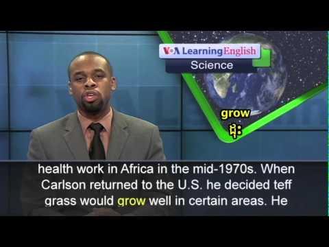 Will Ethiopia