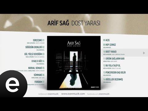 Dost Yarası (Arif Sağ) Official Audio #dostyarası #arifsağ