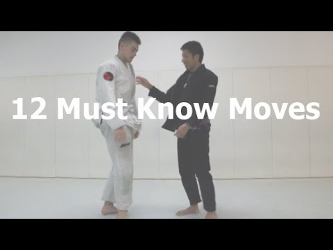 12 Must Know Techniques for White Belts