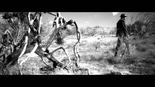 Billy Sherwood – No Man's Land feat. Steve Morse (Official / New / Studio Album / 2015)