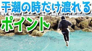 【所持金0円で即終了 釣り生活3 #2】干潮の時だけ渡れるポイントで釣りしてみた